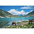 Lake Saif all Malook Naran Valley.jpg