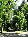 Landschaftsgarten Schloss Dachau-1.jpg