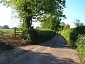 Lane near Gribbles - geograph.org.uk - 178278.jpg