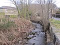 Langley Burn, Haydon Bridge - geograph.org.uk - 1726141.jpg