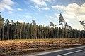 Latvia А7 - panoramio.jpg