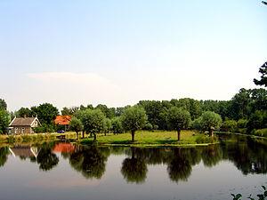 Lekkerkerk - Loet Forest north of Lekkerkerk.
