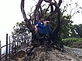 Lembang, West Bandung Regency, West Java, Indonesia - panoramio.jpg