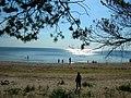 Lettonia - Spiaggia Lettone - Dal bosco al mare - panoramio.jpg