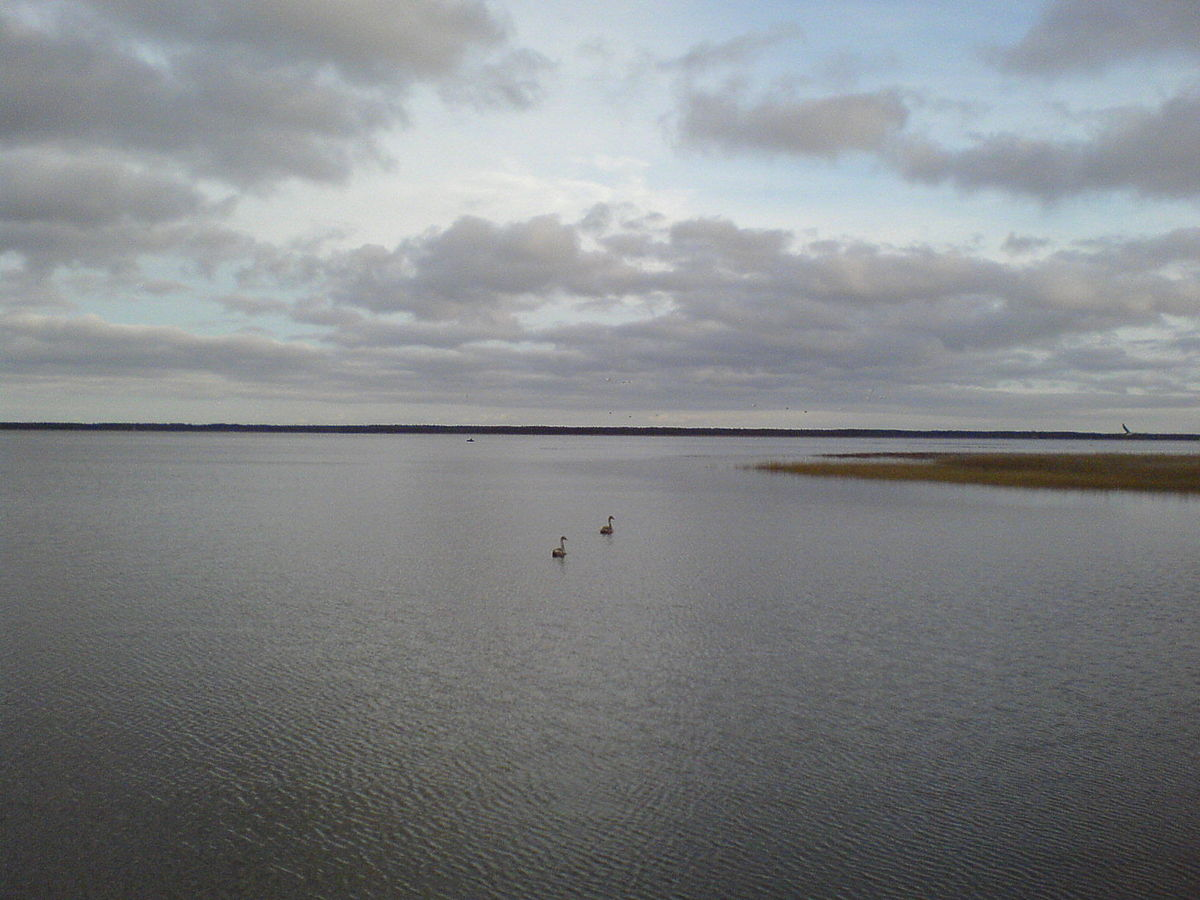 Lake liepja wikipedia publicscrutiny Image collections