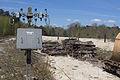 Ligne de Bourron-Marlotte à Malesherbes - 2013-04-21 - IMG 9262.jpg