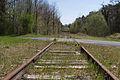 Ligne de Bourron-Marlotte à Malesherbes - 2013-04-21 - IMG 9340.jpg
