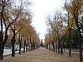 Linares - 026 (30738179675).jpg