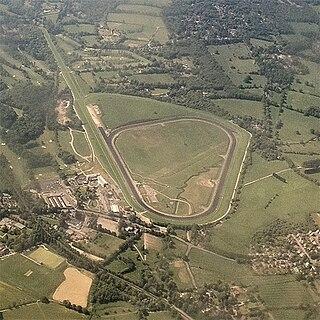 Lingfield Park Racecourse horse racing venue in England