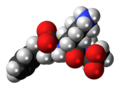 Lisinopril zwitterion 3D spacefill.png