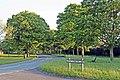 Little Storeton Lane, Storeton (geograph 2966335).jpg