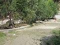 Livadia, Romania - panoramio (36).jpg
