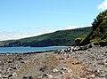 Llanina Beach - geograph.org.uk - 209673.jpg