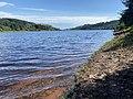 Llwyn-onn reservoir (geograph 6563539).jpg