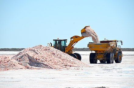 Loading sea salt at an evaporation pond in Walvis Bay; halophile organisms give it a red colour Loading sea salt at evaporation pond, Walvis Bay (2014).jpg