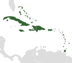 Carte des Antilles (en vert) dans la Caraïbe.
