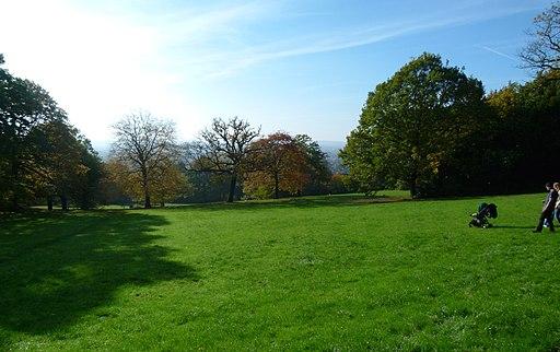 London-Shooters Hill, Oxleas Wood, Oxleas Meadow