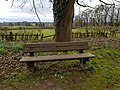 Long shot of the bench (OpenBenches 5008-2).jpg