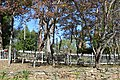 Longwood plantation house site.jpg