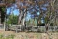 Longwood plantation house site.jpg