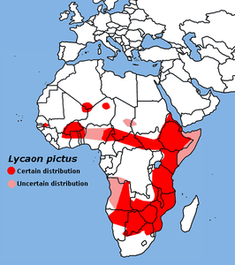 Lycaon pictus map-tob.png