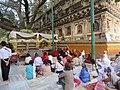 Mahabodhi temple and around IRCTC 2017 (60).jpg