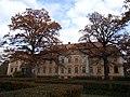 Manor Kokmuiža.jpg