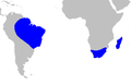Map-Strelitziaceae.PNG