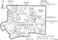 Map of Forsyth County North Carolina With Municipal and Township Labels.PNG