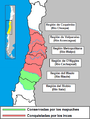 MapucheInca.png