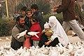 Mazar-e-Sharif (4268537856).jpg