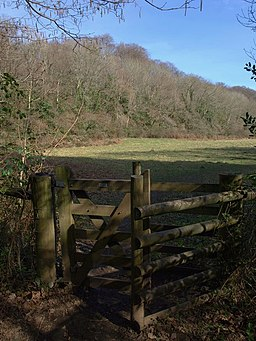 Meadow, Bovey valley - geograph.org.uk - 1210196