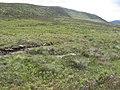 Meall Dail-cheallach - geograph.org.uk - 496372.jpg