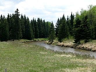 Medicine River (Alberta) - The Medicine River from Alberta Highway 53