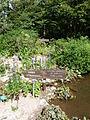 Megaphorbiae-Jardin d'altitude du Haut-Chitelet.JPG