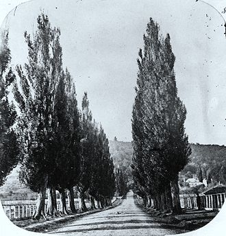 Mile End, Montreal - Mile End Road, 1859