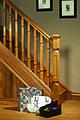 Modern staircase design Oriel collection.jpg