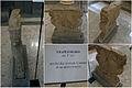 Monte Cassino Museum trapezeforo.jpg