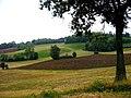 Montecanino - panoramio.jpg