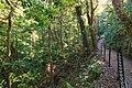 Monteverde Reserve Costa Rica 03.jpg
