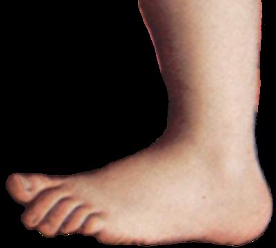 Monty python foot.png