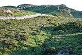 Moorland wall - geograph.org.uk - 466451.jpg