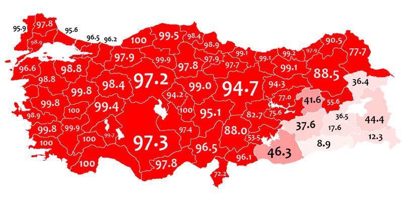 Mother language in 1965 Turkey census - Turkish.png