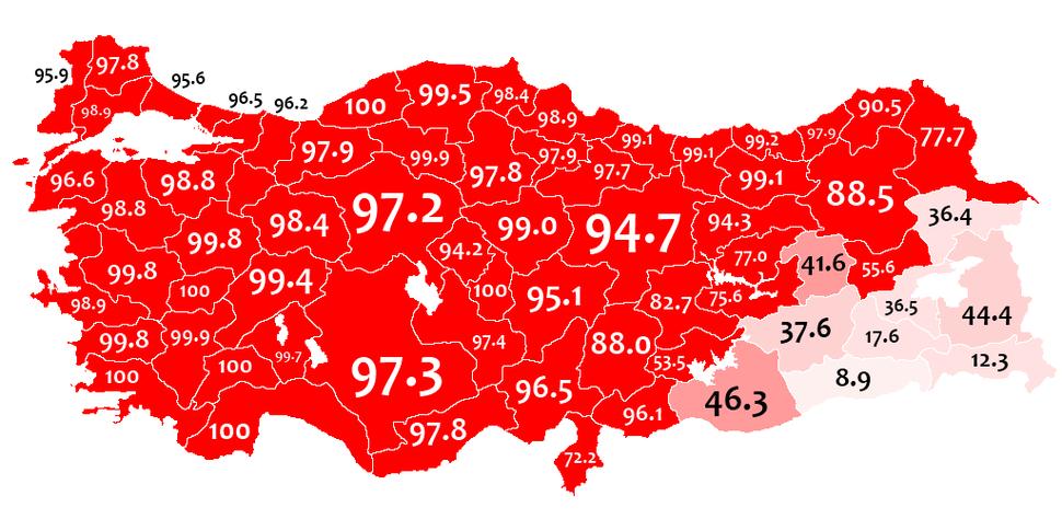 Mother language in 1965 Turkey census - Turkish