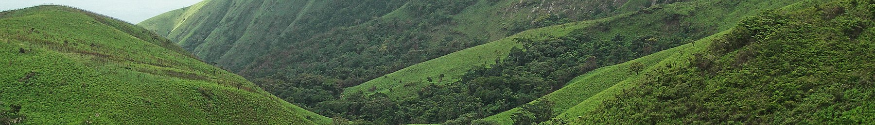 Mount Nimba Strict Nature Reserve banner.jpg
