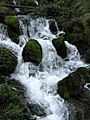 Mountain stream (8064359007).jpg