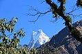 Mt. Macchapucchhere (16).JPG