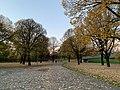 Munich Nov 2020 13 18 44 668000.jpeg