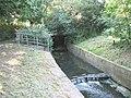 Mutton Brook - geograph.org.uk - 187644.jpg