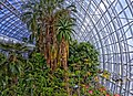 Myriad Botanical Gardens2.jpg